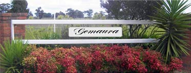 Gemaura, our Corowa property