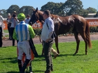 Paul chats to Lewis German after Caulfield win